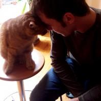 """Un uomo e un gatto fanno a """"braccio di testa"""""""