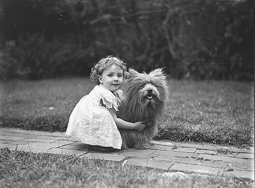 Amicizia tra bambia e cane