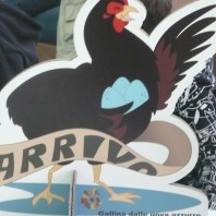 Il gioco della gallina