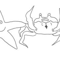 Granchio e stella marina