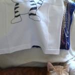 Due gatti e una maglietta