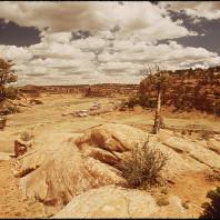 Comunità Navajo