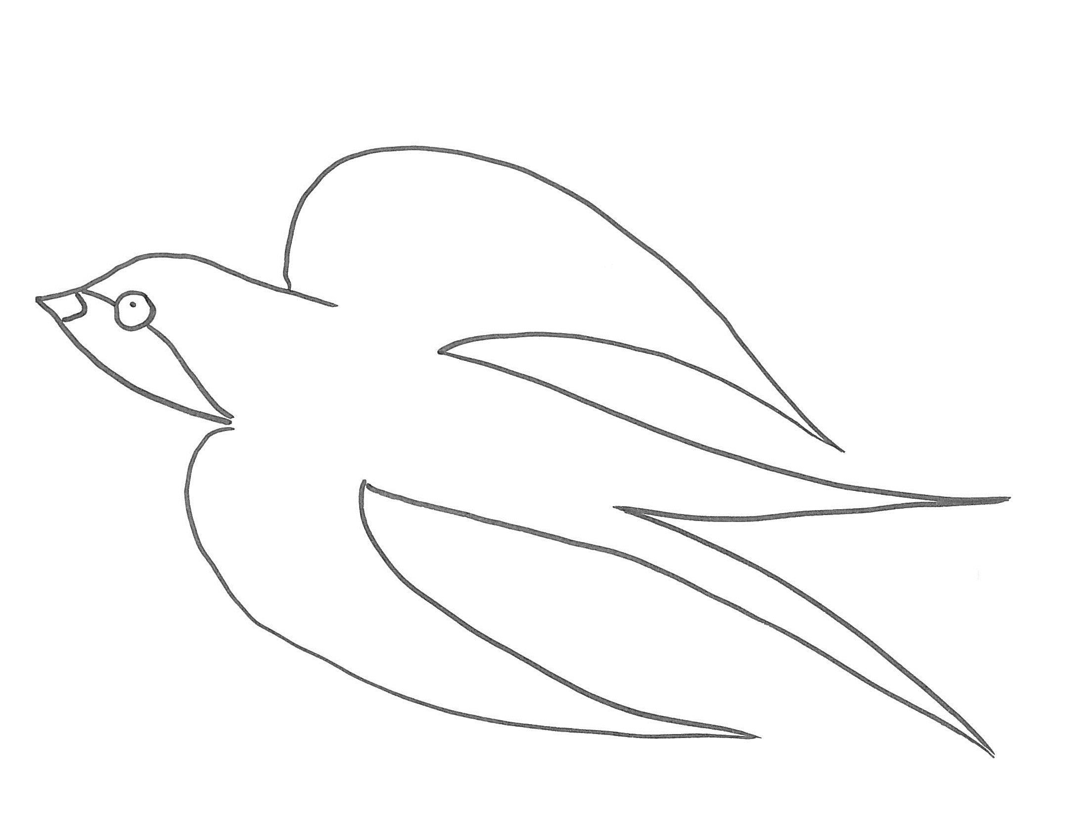 rondine disegno