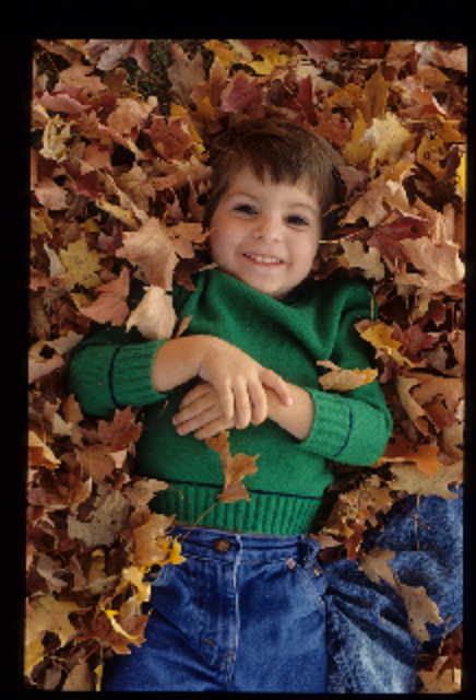 Bambino tra le foglie