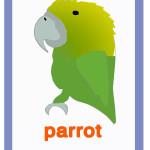 Carta parrot