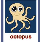 Octopus-polipo