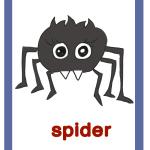Spider-ragno