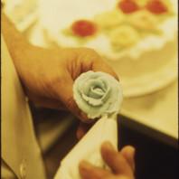 Rosa di Zucchero