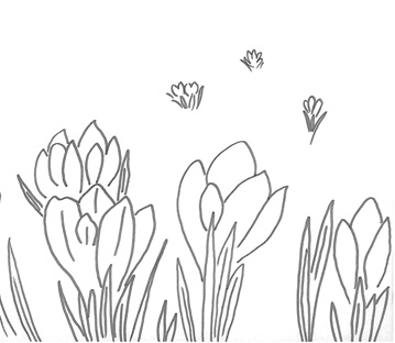 Cerchi disegni di fiori ecco qui primule bucaneve viole for Disegni da stampare e colorare fiori