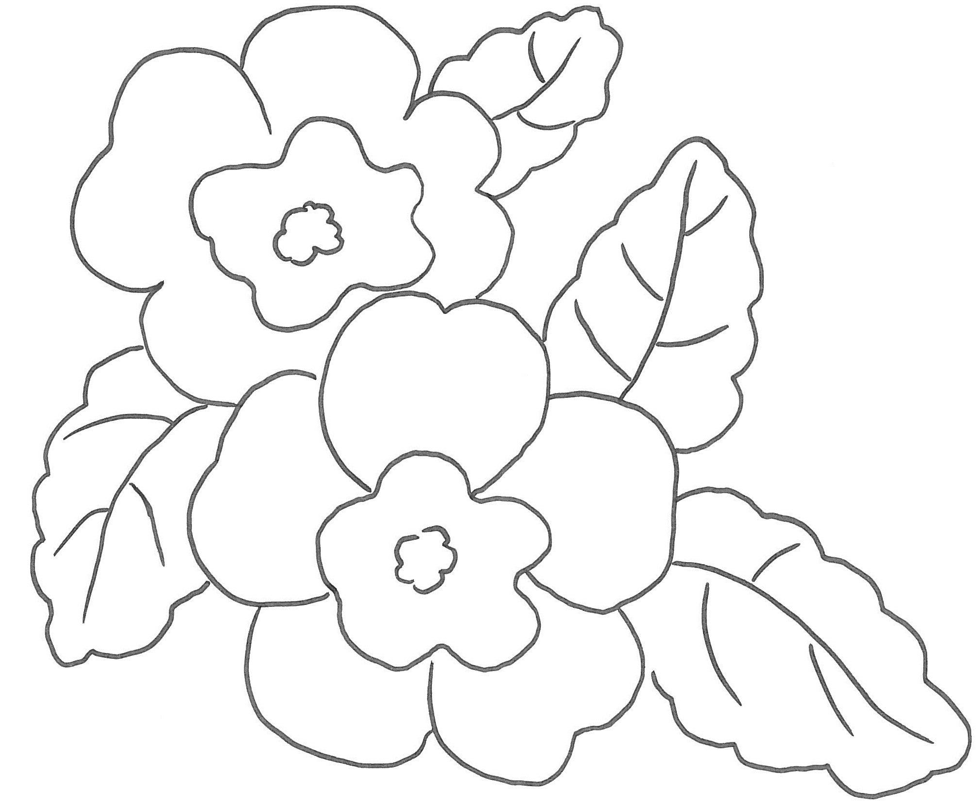 Cerchi disegni di fiori ecco qui primule bucaneve viole for Fiori da colorare e stampare